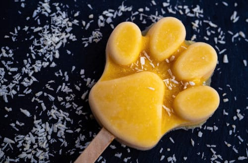 Hundeeis Mango in Pfotenform