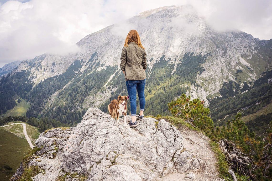 Wandern auf dem Jenner mit Hund