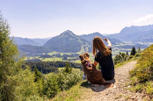 Kaisergebirge mit Hund