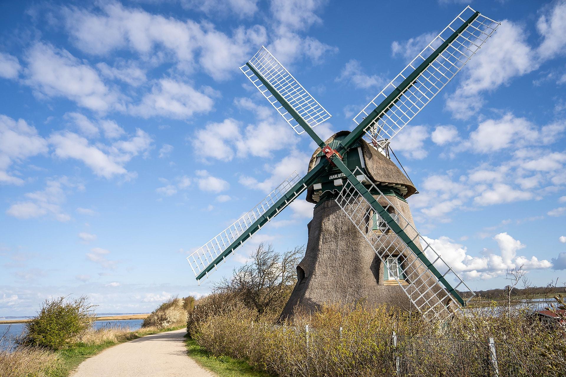 Die Mühle Charlotte in der Geltinger Birk